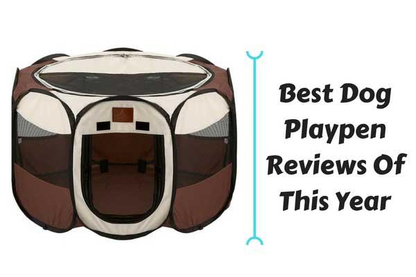 Best Dog Playpen Reviews Of 2018